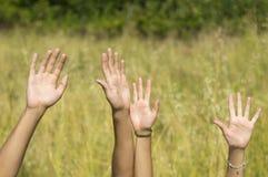 La mano maschio e femminile ha sollevato su nel campo Fotografia Stock