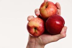 La mano maschio tiene le mele rosse, spazio della copia Mele su bianco fotografia stock libera da diritti
