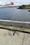 La mano maschio tiene una trappola fatta da sé per i granchi contro il mare di Barents Immagine Stock