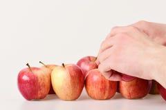 La mano maschio tocca le mele rosso-chiaro Frutti nel colore luminoso immagine stock