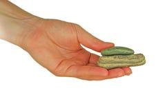 La mano mujeril sostiene una piedra plana redonda Fotografía de archivo
