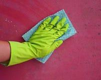 La mano nel guanto pulisce la muffa fotografie stock