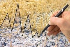 La mano scrive un grafico nei precedenti di un campo coltivato - raggiro Fotografia Stock