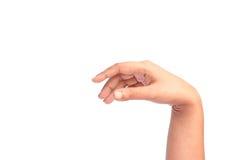 La mano sta mostrando qualcosa su fondo bianco Fotografia Stock