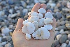 La mano tiene una manciata di mare delle pietre fotografie stock