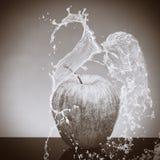 La manzana blanco y negro salpicó por el agua en un fondo blanco y negro Fotos de archivo