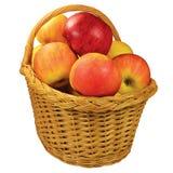 La manzana madura fresca da fruto cesta de mimbre, primer aislado detallado grande, detalle jugoso rojo-maduro de la fruta, tiro  Imágenes de archivo libres de regalías