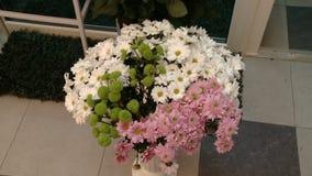 La manzanilla florece ramos en un día de la tienda/del ` s de la tarjeta del día de San Valentín almacen de metraje de vídeo