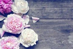 La maqueta de la tarjeta de la invitación de la boda o de felicitación del aniversario adornada con las peonías rosadas y cremosa Imágenes de archivo libres de regalías
