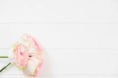La maqueta floral de Flatlay diseñó la fotografía común Fotos de archivo libres de regalías