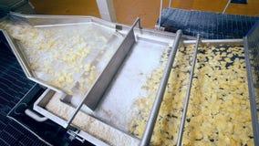 La maquinaria de la comida fríe las patatas fritas en aceite almacen de video