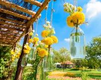 La maravilla florece en una ejecución de la botella de cristal Foto de archivo libre de regalías