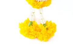 La maravilla florece la guirnalda Foto de archivo libre de regalías