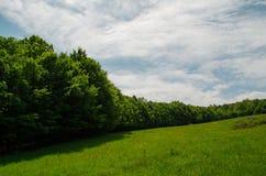 La marche dans la nature tranquille du ressort est inestimable image libre de droits