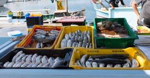 La Marche Poissons aux. ou poissonnerie dans le port de Nouveau Vieux, mA images stock