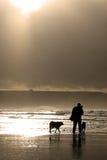 La marea Fotografie Stock