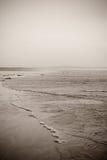 La marea a lo largo de la playa Imagen de archivo libre de regalías