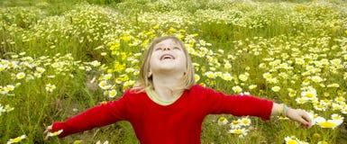 La margarita abierta del prado del resorte de los brazos de la muchacha rubia florece Imagen de archivo