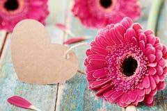 La margarita del Gerbera florece con la nota del saludo en la forma del corazón para la mujer o el día de la madre en fondo de ma fotografía de archivo