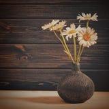 La margarita todavía florece, vida de la belleza contra el escritorio de madera viejo Fotografía de archivo