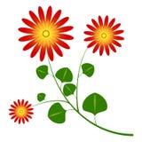 La margherita del fiore gradice royalty illustrazione gratis