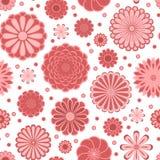 La marguerite de cercle de rose en pastel fleurit sur le modèle sans couture blanc, vecteur illustration de vecteur