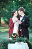 La mariée et le marié Photos stock