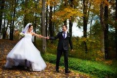 La mariée heureuse et le marié marchant en automne stationnent Photo libre de droits
