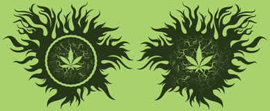 La marijuana creciente sale del logotipo Fotos de archivo libres de regalías