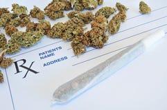 La marijuana medica germoglia con il giunto e la carta di prescrizione Fotografie Stock Libere da Diritti