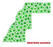La marijuana sale collage de Sahara Map occidental ilustración del vector