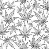 La marijuana sale del modelo incons?til del vector Fondo del c??amo imagen de archivo