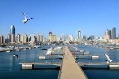 La marina olympique de navigation à Qingdao Photos libres de droits