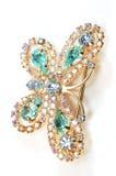 La mariposa azul con el cristal Fotos de archivo libres de regalías