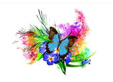 La mariposa con una flor en el fondo del arco iris salpica stock de ilustración