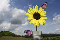La mariposa en la lámpara amarilla de la flor ajardina backgro fotos de archivo