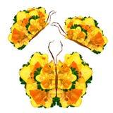 La mariposa floral hecha de los pétalos del narciso se va y florece Foto de archivo libre de regalías