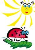 La mariquita es heated en el sol Stock de ilustración