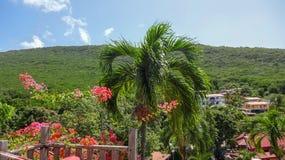 La Martinica è l'isola dei Caraibi piacevole fotografia stock libera da diritti
