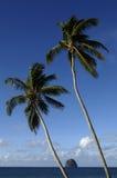 La Martinique, roche de diamont photos stock