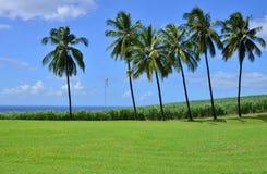 La Martinique, ville pittoresque de Saint Pierre dans les Antilles Image stock