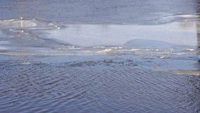 La masa de hielo flotante de hielo grande flota en el río el día de invierno almacen de video
