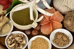 La mascarilla con el asiaticum de Crinum, hojas del verde se gelifica y la hierba tailandesa tiene medicina de la propiedad Imagenes de archivo
