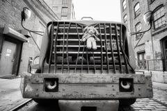 La mascota de la felpa sujetó a un tope del camión parqueado en una calle en Brooklyn Dumbo Imagen de archivo libre de regalías