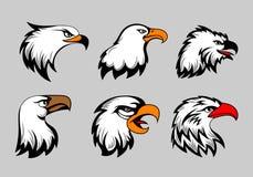 La mascotte dell'aquila calva dirige l'illustrazione di vettore Insieme americano della testa delle aquile per il logo e le etich Immagine Stock Libera da Diritti
