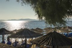 La mattina ad una spiaggia con le chaise-lounge sotto la palma lascia gli ombrelli Ierissos, Grecia Immagine Stock Libera da Diritti