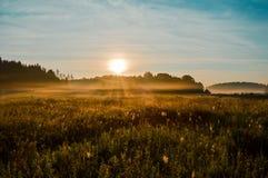 la mattina del sole Immagini Stock