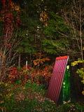 La mattina di autunno lascia la toilette degli alberi immagine stock