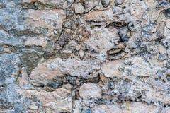La Maya de Tulum arruina la pared encima del cierre imágenes de archivo libres de regalías