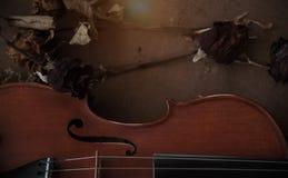 La media parte delantera del violín clásico Foto de archivo